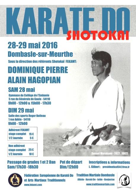 Stg Shotokaï FEKAMT 28-29 mai 16-DP AH
