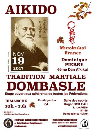 TMD-Aikido 19 Nov 17