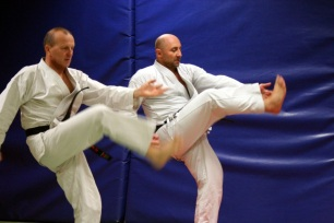 kcd karate do 119