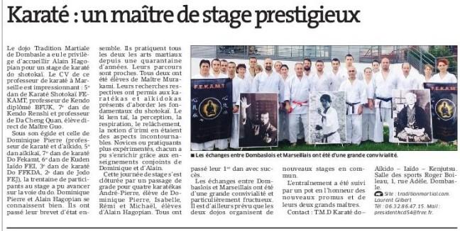 karate-un-maitrede-stage-prestigieux-jpg-2