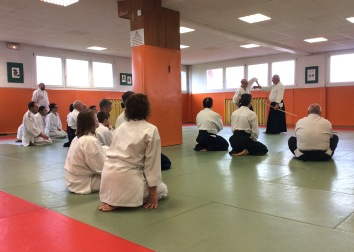 benedetti-shihan-tmd-2017-28