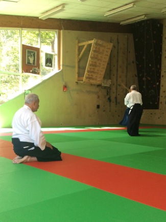 Tiki Shewan Aikido la Claquette_8845