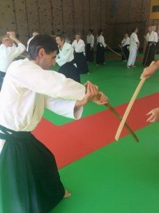 Tiki Shewan Aikido la Claquette_8855