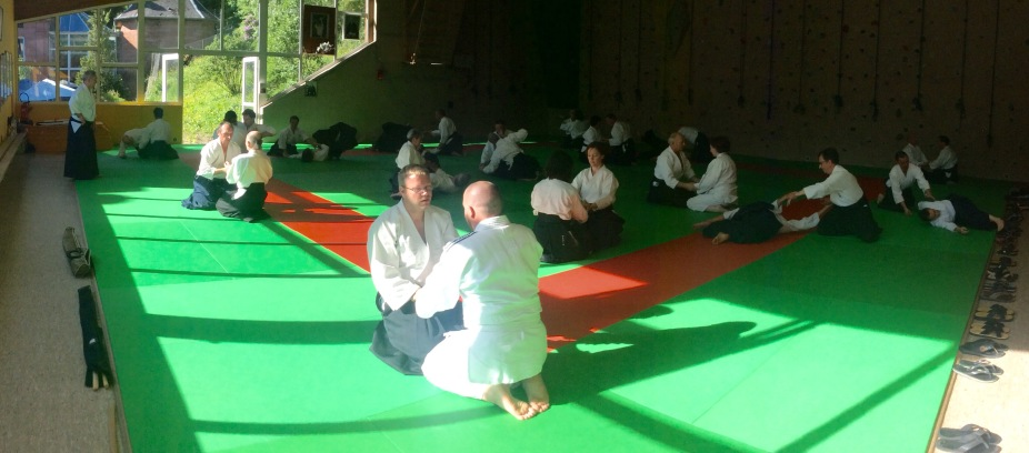 Tiki Shewan - Mutokukai - Tradition Martiale Dombasle 15