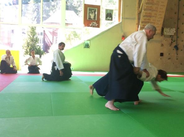 Tiki Shewan - Mutokukai - Tradition Martiale Dombasle 26