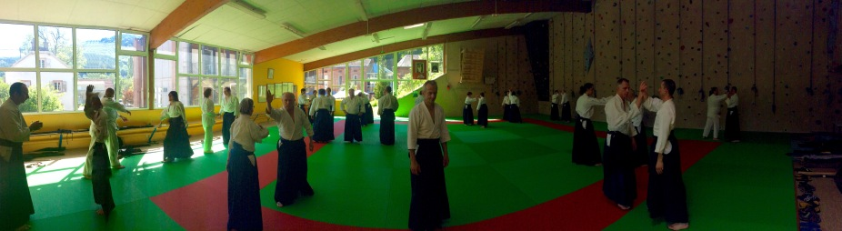 Tiki Shewan - Mutokukai - Tradition Martiale Dombasle 27