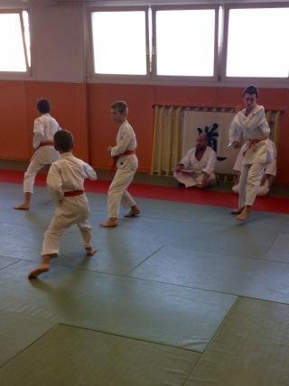 TMD - passage de grades enfants - shotokaÏ - FEKAMT 37