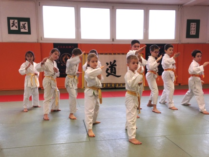 TMD Enfants Karaté Shotokaï FEKAMT dec 2018_3593