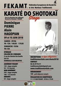 STAGE 1 SHOTOKAI FEKAMT - 9-10 juin 18