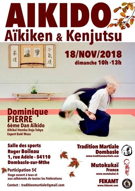 Stg TMD-Aikido 18 Nov 18 (1)