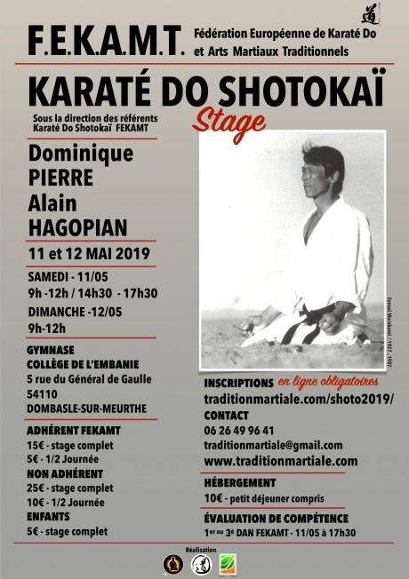 STAGE SHOTOKAI FEKAMT Dombasle - 11-12 mai 2019