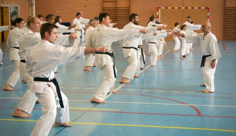 Traditon Martiale Dombasle Stage SHOTOKAI KARATE DO784