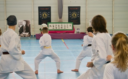 Traditon Martiale Dombasle Stage SHOTOKAI KARATE DO786