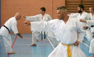 Traditon Martiale Dombasle Stage SHOTOKAI KARATE DO791