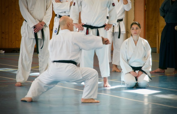 Traditon Martiale Dombasle Stage SHOTOKAI KARATE DO794