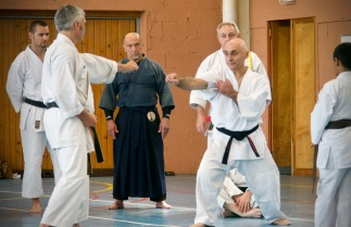 Traditon Martiale Dombasle Stage SHOTOKAI KARATE DO796