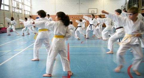 Traditon Martiale Dombasle Stage SHOTOKAI KARATE DO828 (2)
