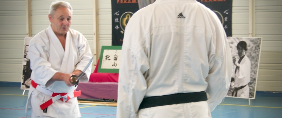 Traditon Martiale Dombasle Stage SHOTOKAI KARATE DO855 (3)