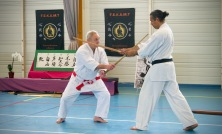 Traditon Martiale Dombasle Stage SHOTOKAI KARATE DO860 (1)